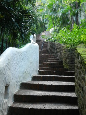 Pelican Eyes Resort & Spa: Stairs everywhere! Slippery when wet!