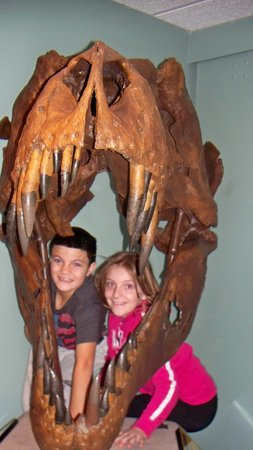 Academy of Natural Sciences of Drexel University: Nathan and Nicole at Dino Hall