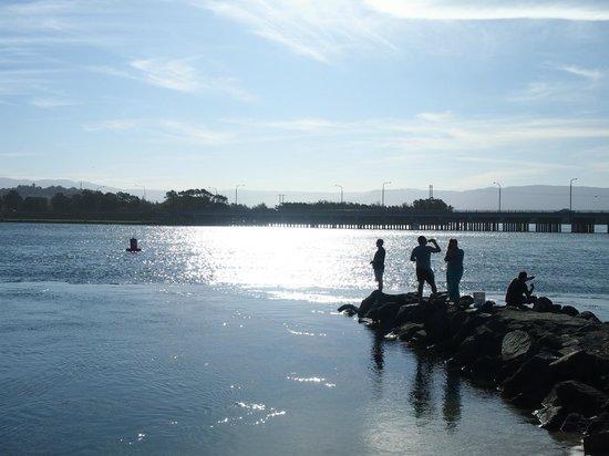 Windang Beach Tourist Park: nice view