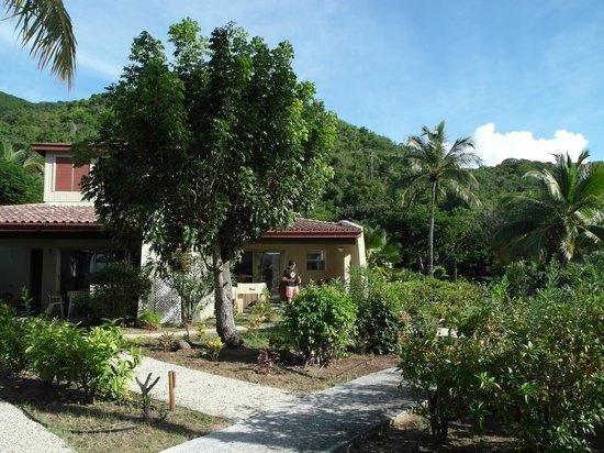 Mango Bay Resort: Beautiful tropical landscaping