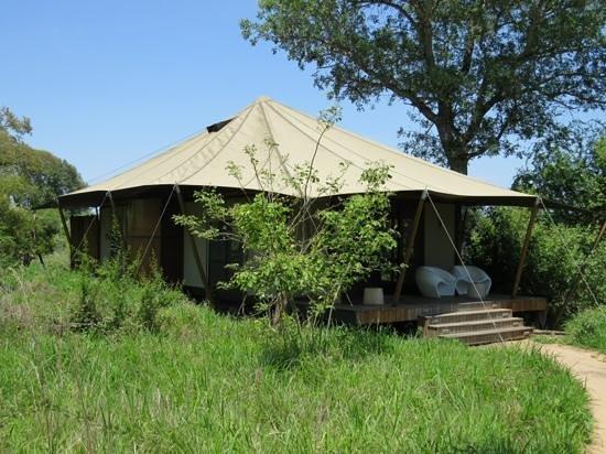andBeyond Ngala Tented Camp : Zelt Nr. 1