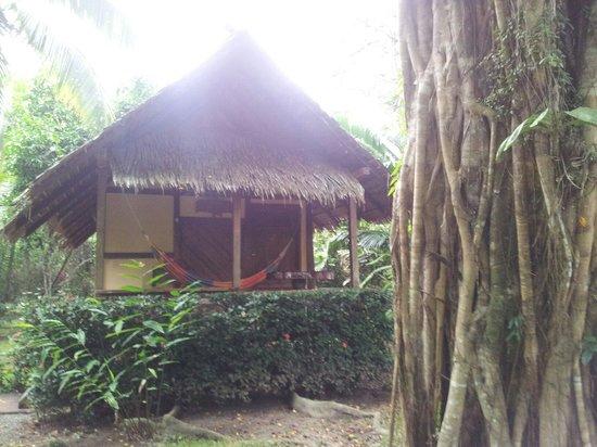 Alby Lodge: Una de las cabinas