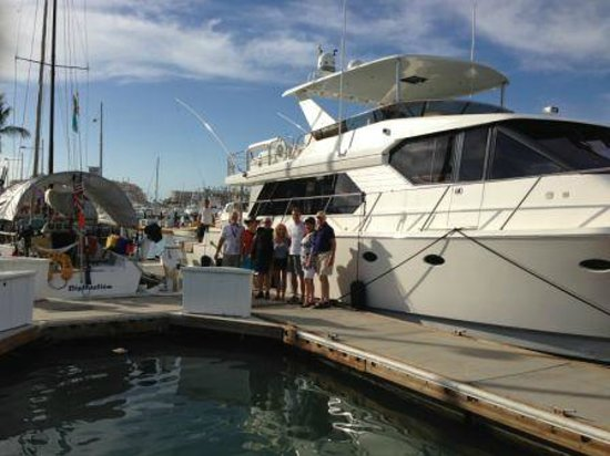 Lolly picture of cabo magic sportfishing cabo san lucas for Magic sport fishing