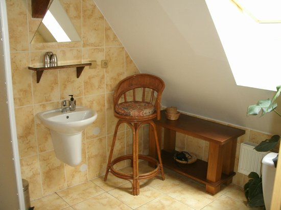 Penzionek Olsakovsky: Attic Room (Bathroom)