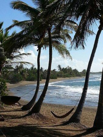 Guayama, Puerto Rico: Vista - View
