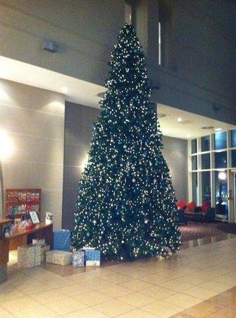 Radisson Blu Hotel Durham: Christmas Tree