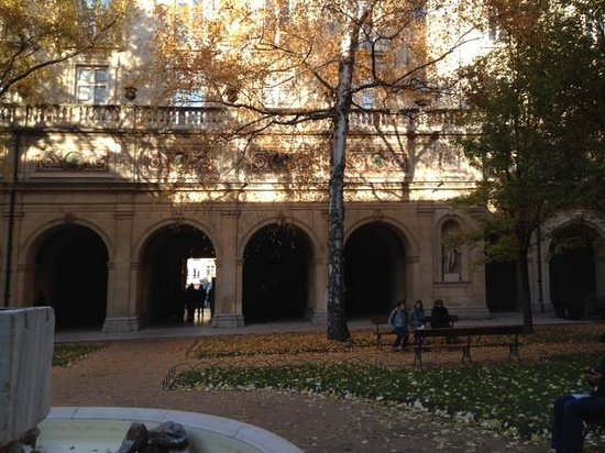 Musee des Beaux-Arts: the courtyard