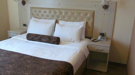 Belgrade City Hotel: Номер