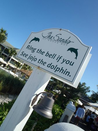 Hemingway's Restaurant: Jojo bell