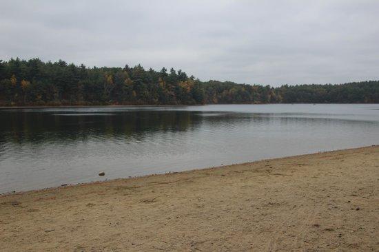 essays walden pond
