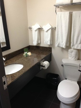 Holiday Inn Winnipeg Airport - Polo Park: Small but modern bathroom