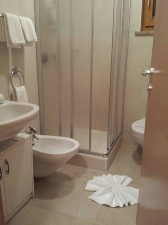 Hotel FleurAlp : Bagno