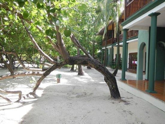 Adaaran Club Rannalhi : Beach Villa