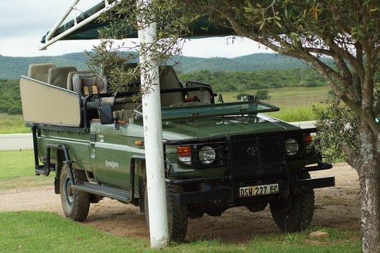River Bend Lodge: 4*4 for Safari