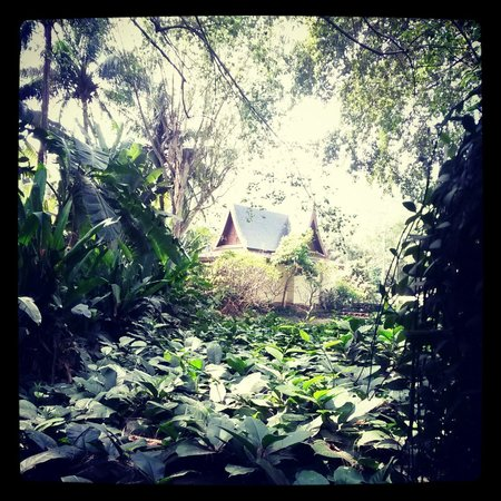 Siam Bayshore: Nice places