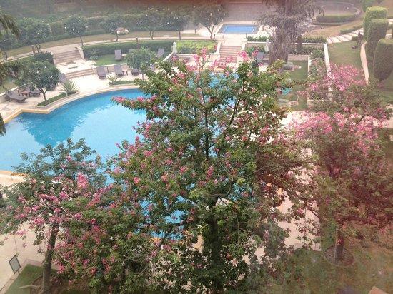 Radisson Blu Plaza Delhi Airport: View from room