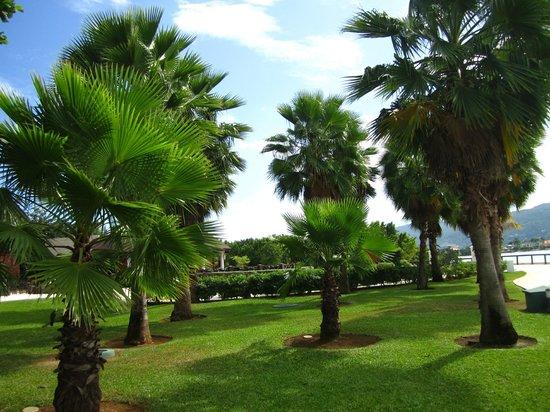 Secrets Wild Orchid Montego Bay: Gardens