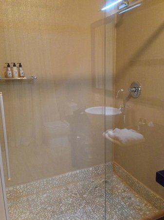 Belvedere Boutique Hotel: The shower