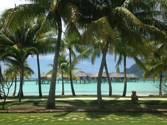 Four Seasons Resort Bora Bora: de paseo...