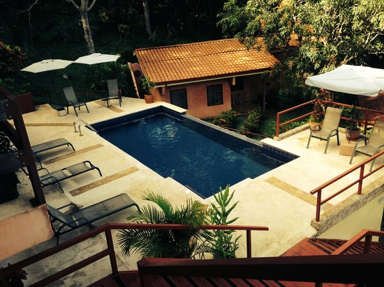 Amatierra Retreat and Wellness Center : The lovely pool