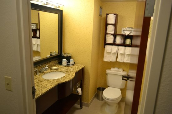 Hampton Inn and Suites Charlottesville - At The University: Bathroom