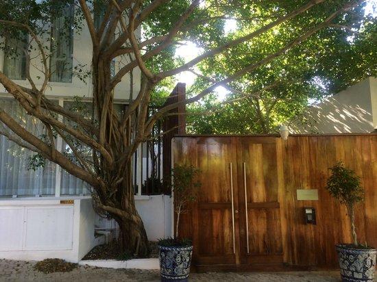 Hotel Secreto : Front doors