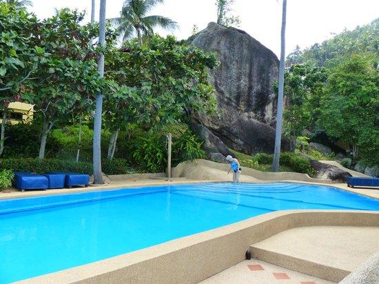 Samui Mountain Village: A most wonderful salt-water pool