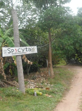 SpicyTao Backpackers: the sign