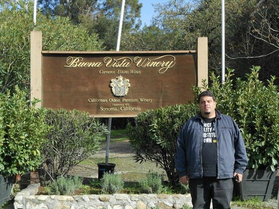 Buena Vista Winery: Chegada