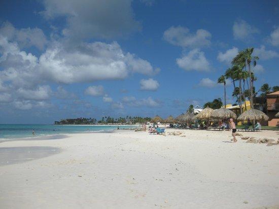 Tamarijn picture of divi aruba all inclusive oranjestad - Divi aruba and tamarijn aruba ...