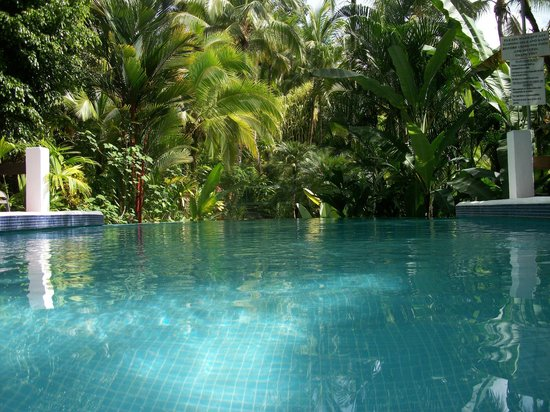 Falls Resort at Manuel Antonio : Pool
