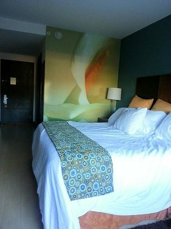 Holiday Inn Express San Jose Forum : King room