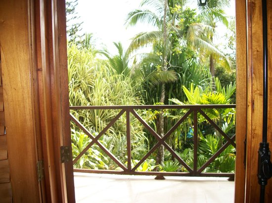Falls Resort at Manuel Antonio: View from our doorway