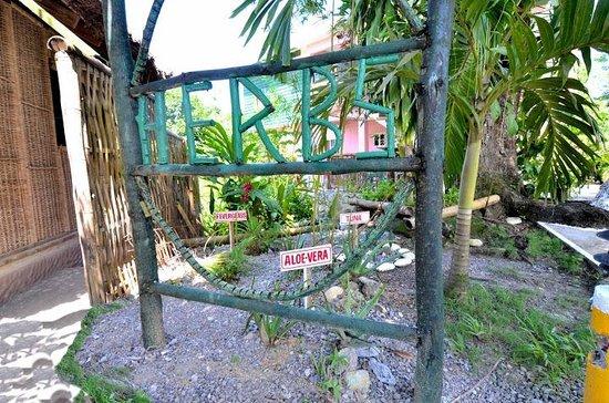 Bay View Eco Resort & Spa: All Natural Herbs