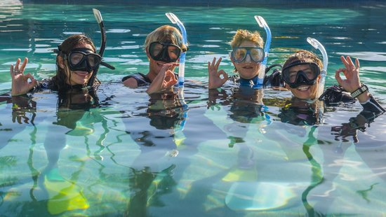 Cairns Dive School