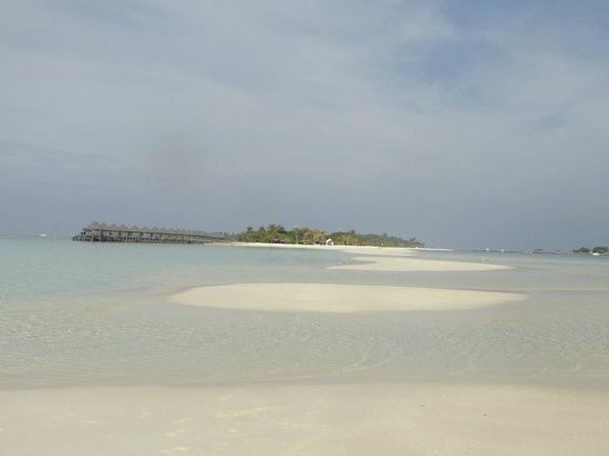 Kuredu Island Resort & Spa : langue de sable