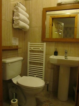 Pearse Lodge B&B: 'Elm' room - bath