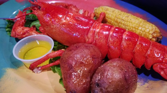 Frenchy's Saltwater Cafe : Lobster mania