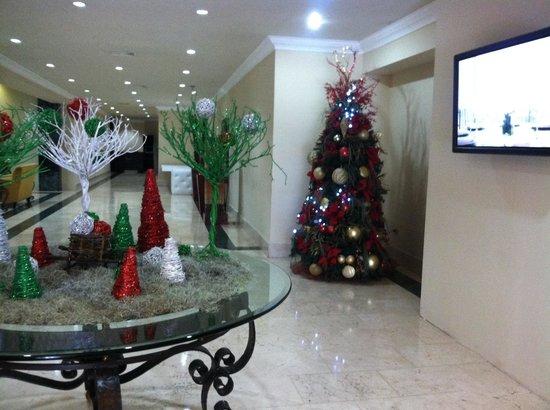 Hodelpa Gran Almirante Hotel & Casino : Holiday decorations!