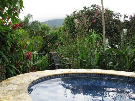 Volcano Lodge & Springs : Jacuzzi con agua termal