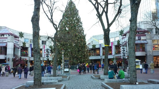 Christmas In Boston Massachusetts.Christmas Tree At Faneuil Hall Marketplace Picture Of