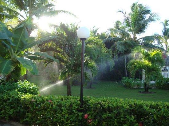 Luxury Bahia Principe Ambar Don Pablo Collection: Gardens in Bahia Principe Ambar