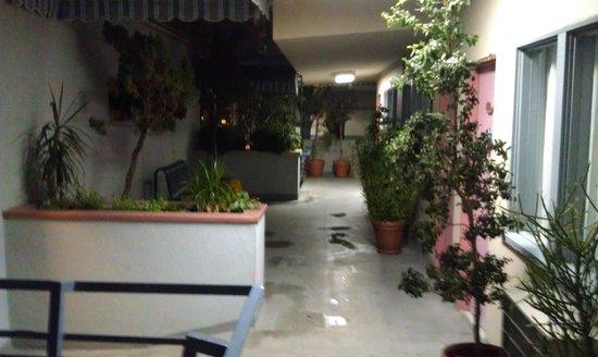 Travelodge Hotel LAX Los Angeles Intl: Двор