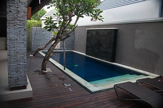The Wolas Villas & Spa : The private pool - great size