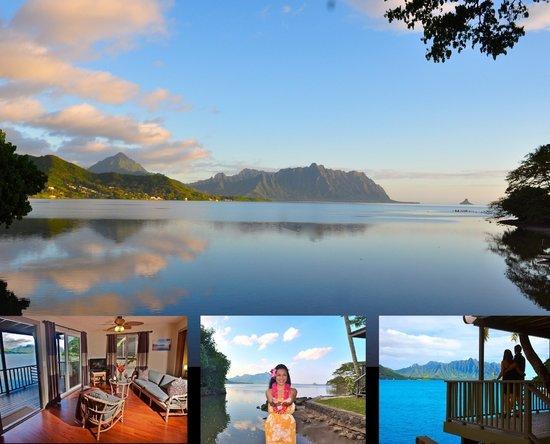 Paradise Bay Resort Hawaii (Kaneohe, Oahu) - Resort