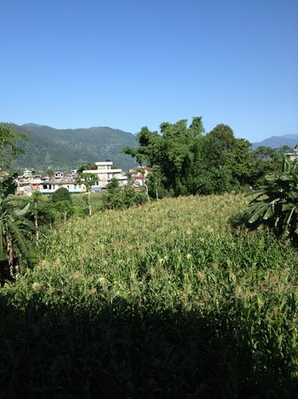 Pokhara Star Inn: View from my Room