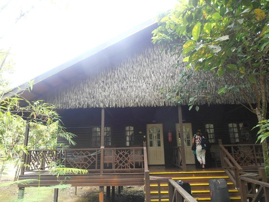 Bilit Rainforest Lodge: Lodges/Rooms