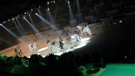 Medieval Times Dinner & Tournament: Medieval Times