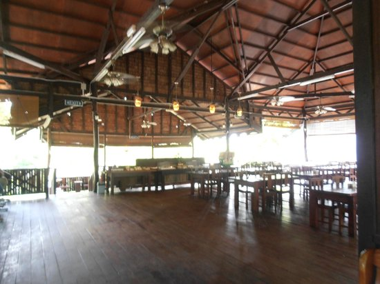 Bilit Rainforest Lodge: Main Area