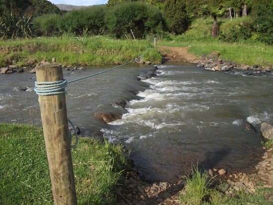 Kauri Coast Top 10 Holiday Park: Fording the river